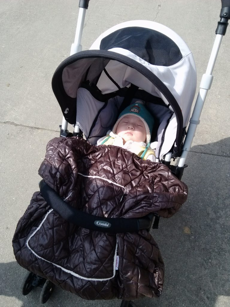 טיולון לתינוק