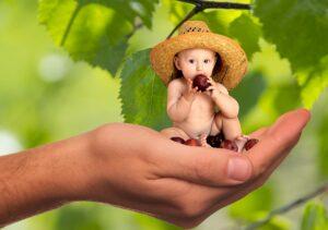 מה התזונה המומלצת לתינוק בשנה הראשונה
